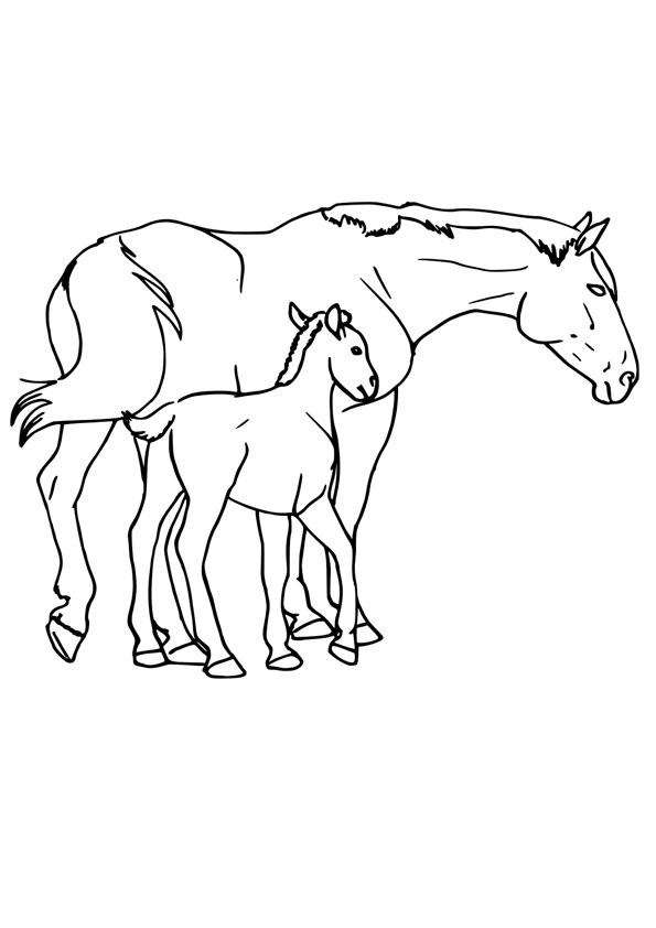 Coloring Pages Baby Horse With Mom Coloring Page