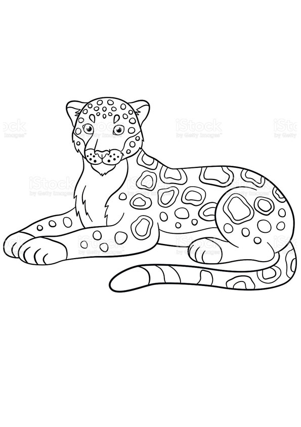 Coloring Pages Printable Jaguar Coloring Sheet For Kids