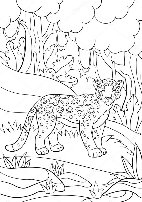 Coloring Pages Angry Jaguar Coloring Pages For Kids