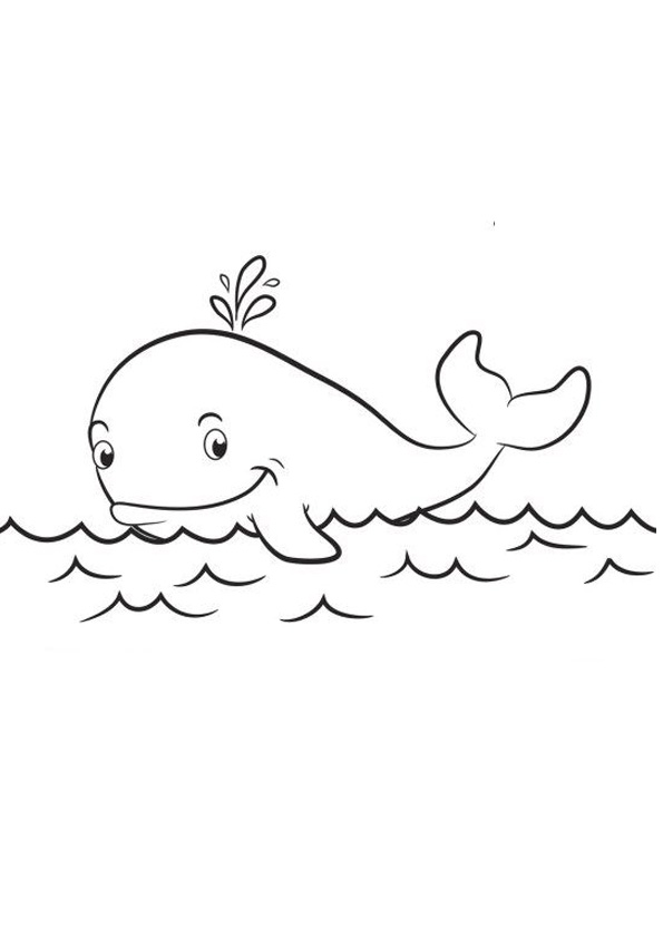 Coloring Pages Cute Whale Coloring Pages