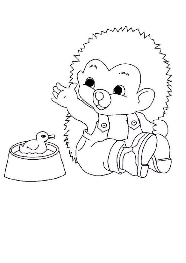 Hedgehog Printable Coloring Page   842x595