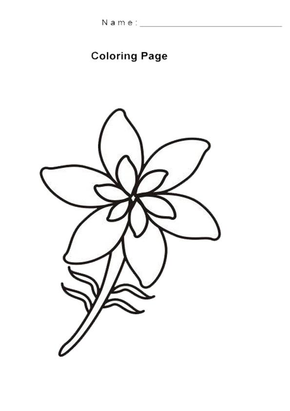 Top 10 Free Printable Princess Jasmine Coloring Pages Online | 842x595