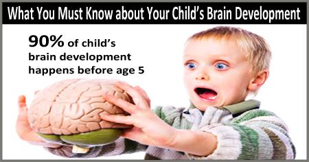 toddler brain development