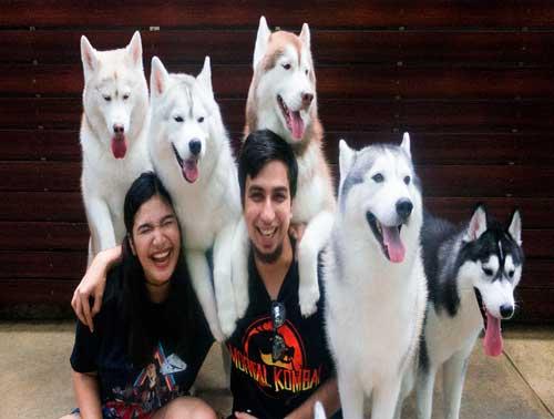 Visit a Dog Cafe